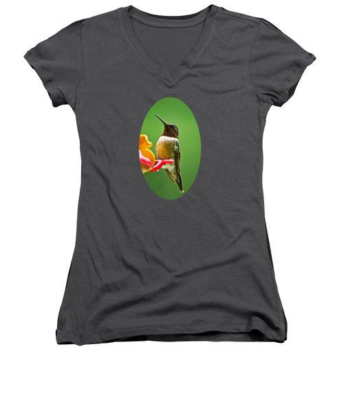 Rainy Day Hummingbird Women's V-Neck T-Shirt