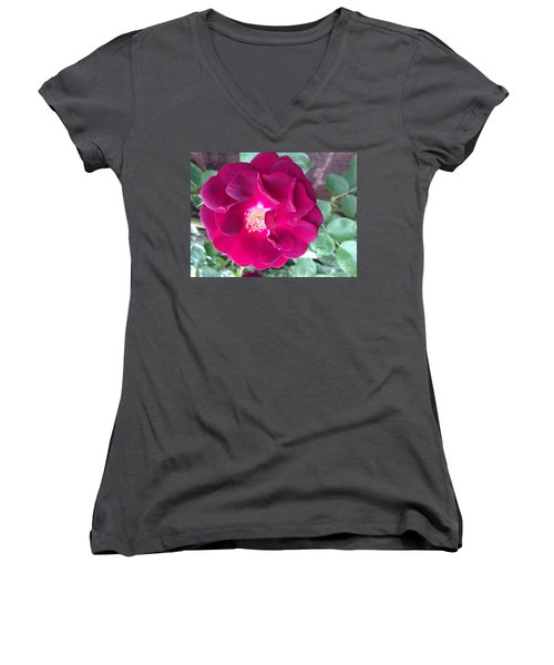 Rambling Rose Women's V-Neck T-Shirt (Junior Cut)