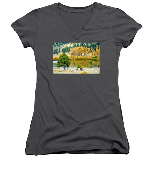 Ranch Pond In Autumn Women's V-Neck (Athletic Fit)