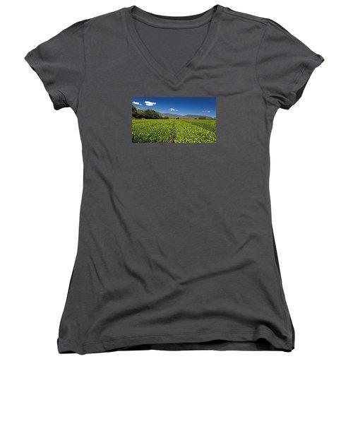 Ready For Harvest Women's V-Neck T-Shirt (Junior Cut) by Mark Lucey
