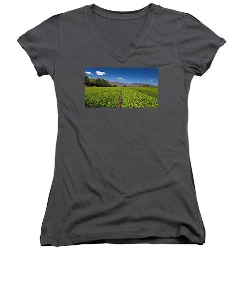 Ready For Harvest Women's V-Neck