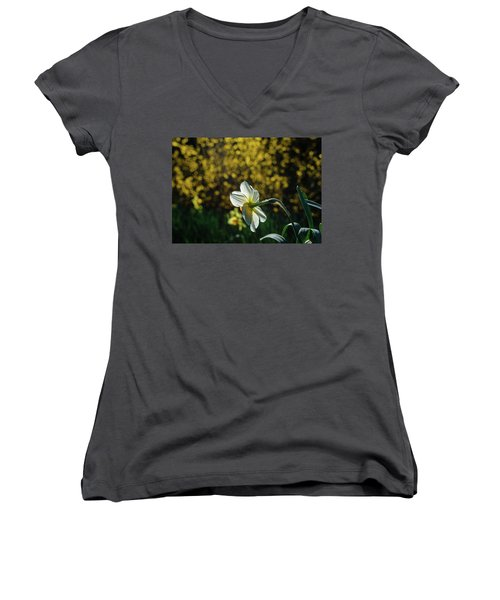 Rear View Daffodil Women's V-Neck (Athletic Fit)