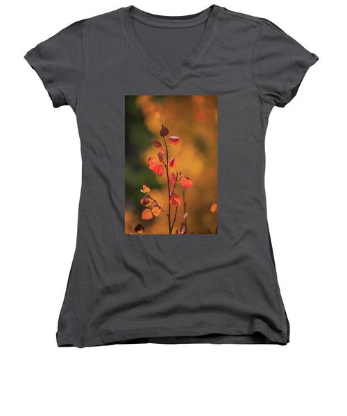 Red And Gold Women's V-Neck