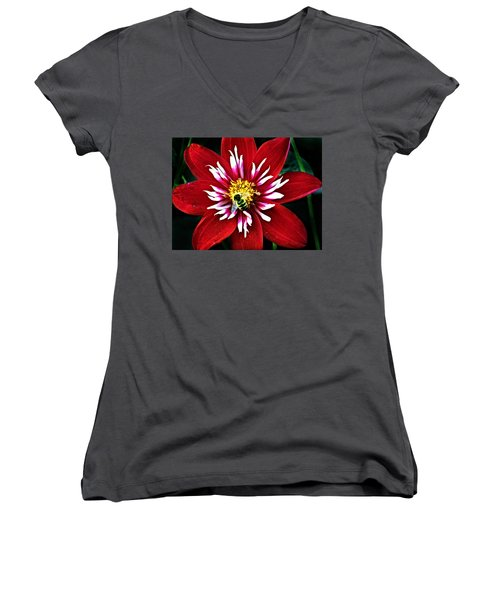 Red And White Flower With Bee Women's V-Neck