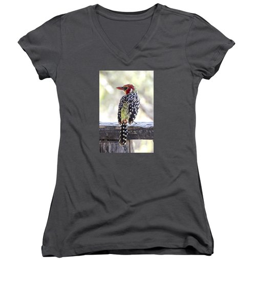 Red-and-yellow Barbet Women's V-Neck T-Shirt