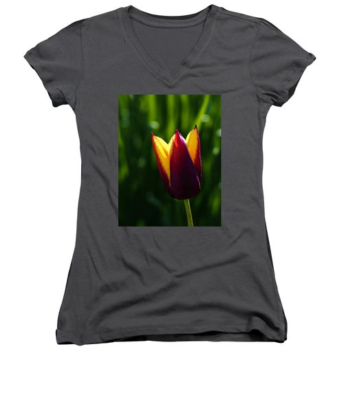 Red And Yellow Tulip Women's V-Neck (Athletic Fit)