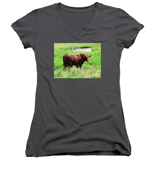 Women's V-Neck T-Shirt (Junior Cut) featuring the photograph Red Angus Bull by J L Zarek