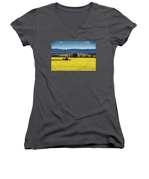 Red Barns In A Sea Of Canola Women's V-Neck