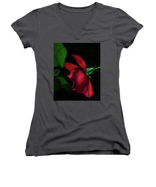 Red Beauty Women's V-Neck T-Shirt