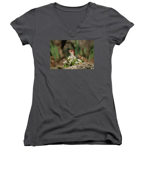 Red-bellied Woodpecker In Spring Women's V-Neck
