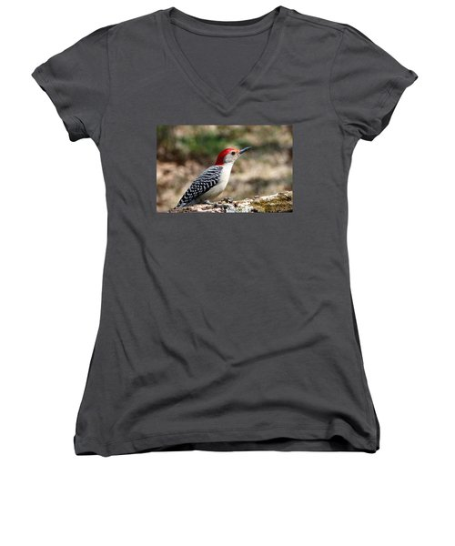 Red-bellied Woodpecker Women's V-Neck