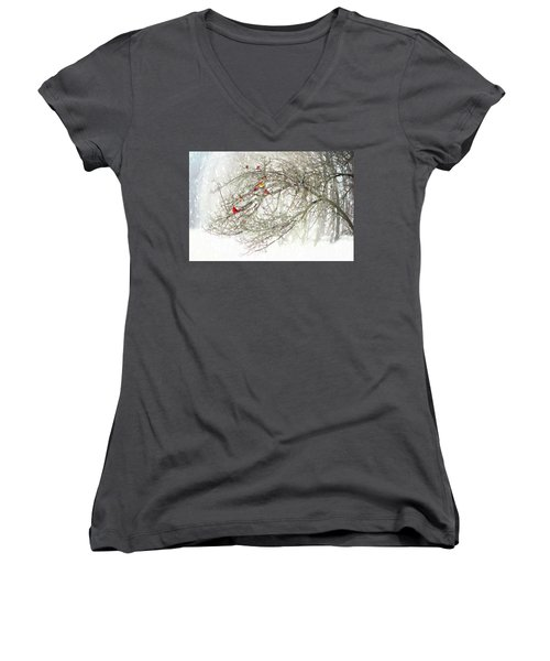 Red Bird Convention Women's V-Neck (Athletic Fit)