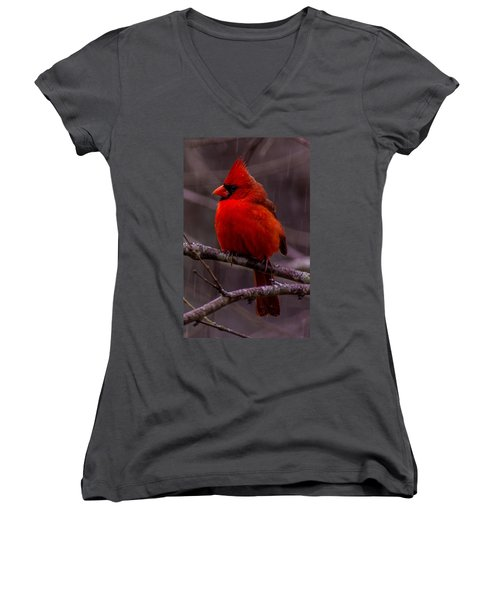 Red Bird Women's V-Neck (Athletic Fit)