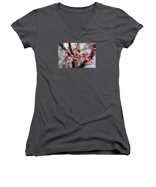 Women's V-Neck T-Shirt (Junior Cut) featuring the photograph Red Cloud Dogwood 2012410_90a by Tina Hopkins