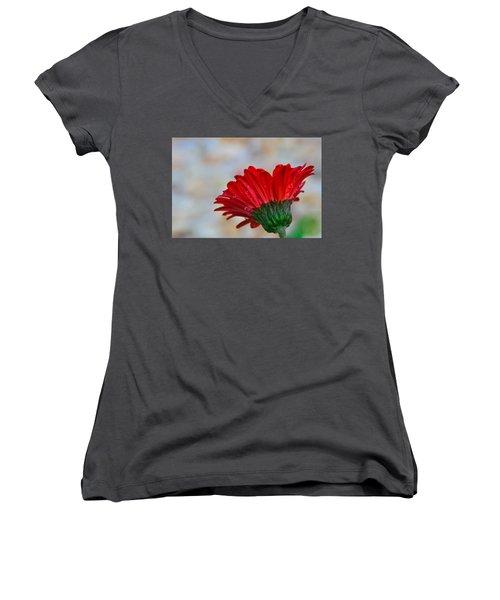 Red Daisy  Women's V-Neck