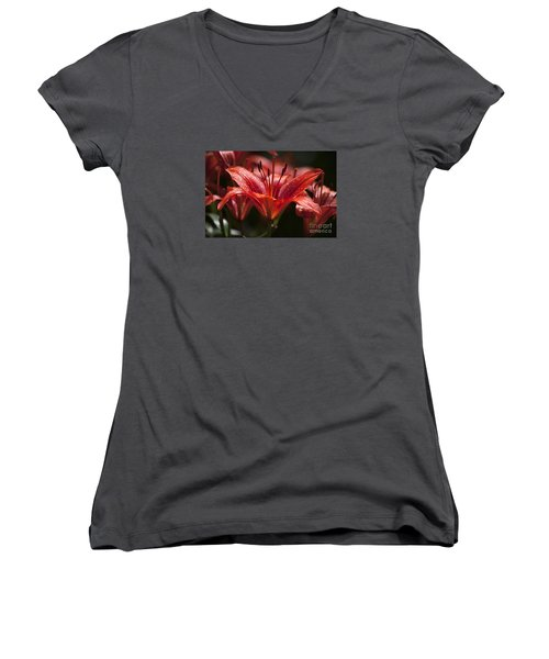 Red Day Lily 20120615_52a Women's V-Neck T-Shirt