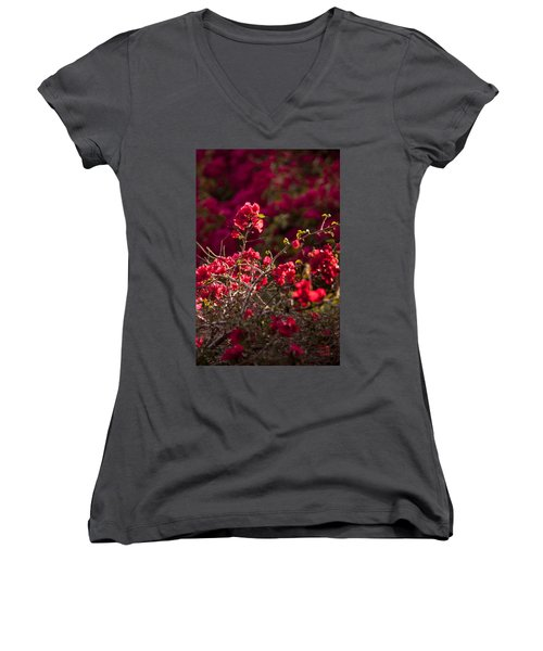 Red Flowering Quince Schrub Women's V-Neck T-Shirt (Junior Cut) by Daniel Hebard