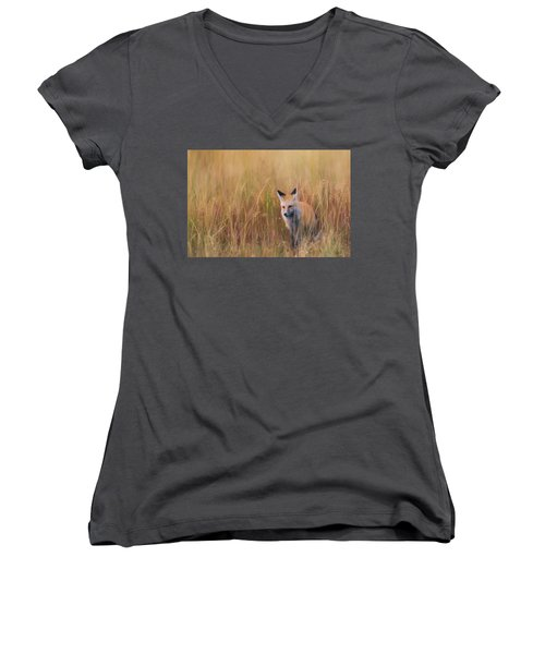 Women's V-Neck T-Shirt (Junior Cut) featuring the photograph Red Fox Hunting  by Kelly Marquardt