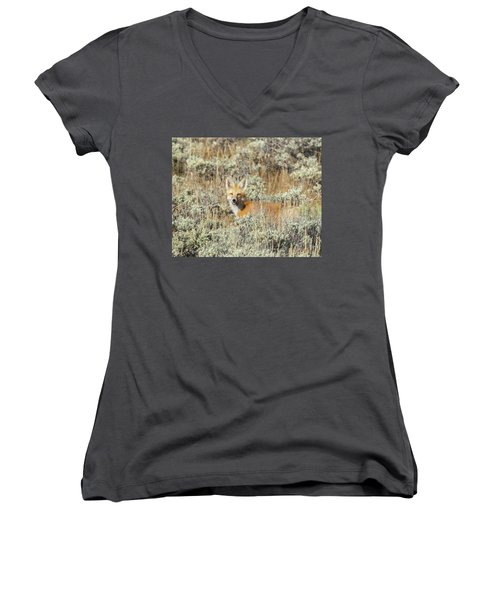 Red Fox In Sage Brush Women's V-Neck (Athletic Fit)