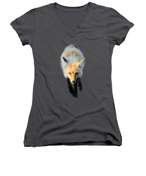 Red Fox Shirt Women's V-Neck