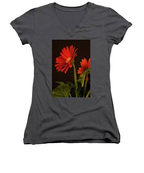 Women's V-Neck T-Shirt (Junior Cut) featuring the photograph Red Gerbera Daisy 1 by Richard Rizzo