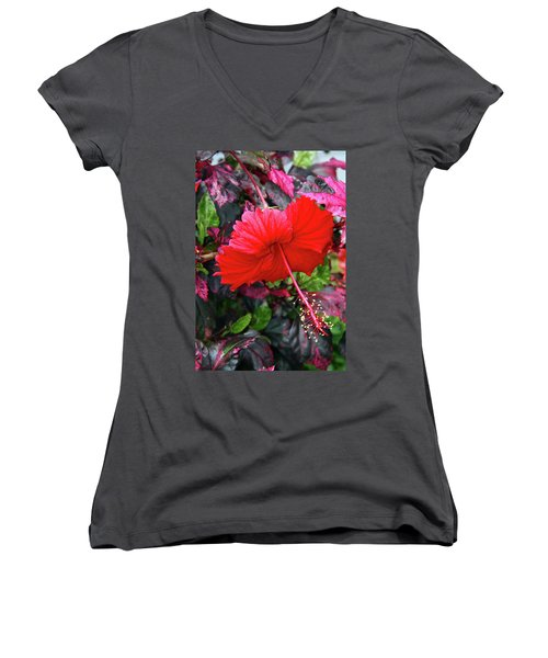 Red Hibiscus  Women's V-Neck T-Shirt (Junior Cut) by Inspirational Photo Creations Audrey Woods