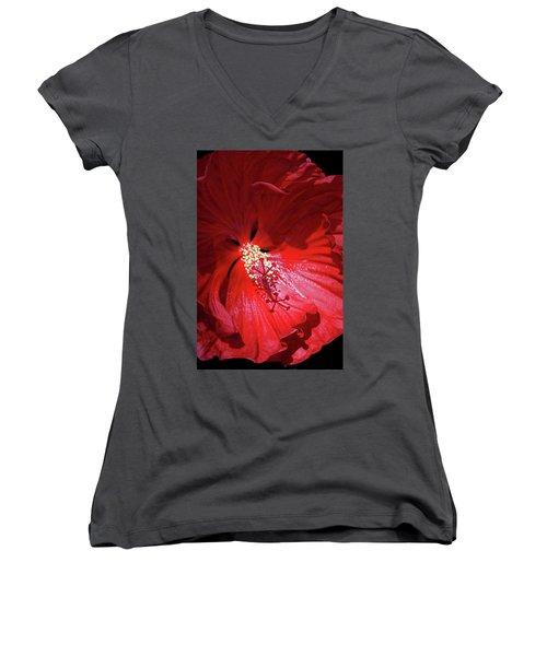 Red Hibiscus Women's V-Neck T-Shirt (Junior Cut) by Judy Johnson