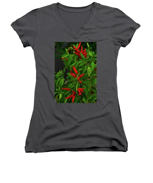 Red Hot Chili Peppers Women's V-Neck (Athletic Fit)