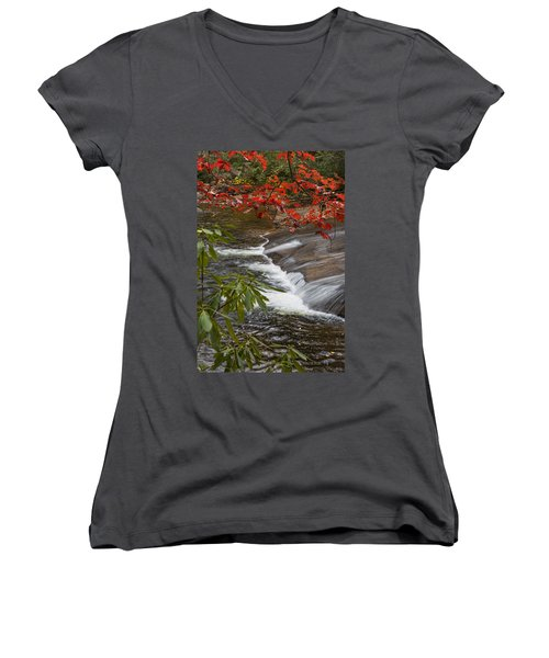 Red Leaf Falls Women's V-Neck