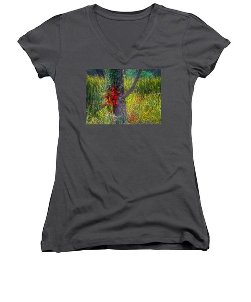 Red Leaves And Vines On Tree In Forest Of Reeds Women's V-Neck T-Shirt (Junior Cut) by John Brink
