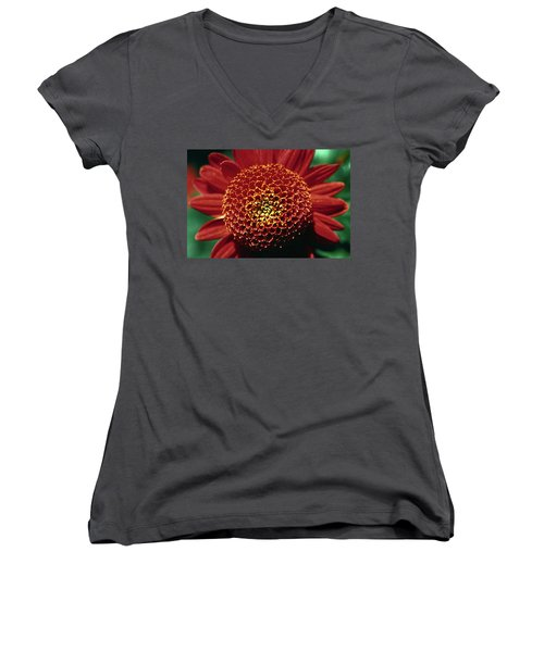 Women's V-Neck T-Shirt (Junior Cut) featuring the photograph Red Mum Center by Sally Weigand