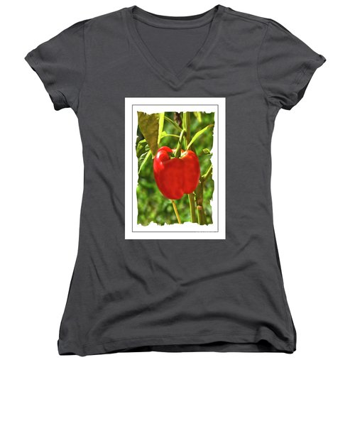 Red Pepper On The Vine Women's V-Neck (Athletic Fit)
