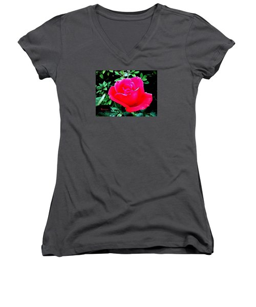 Women's V-Neck T-Shirt (Junior Cut) featuring the photograph Red-pink Rose by Sadie Reneau