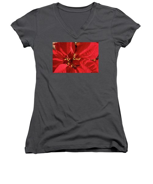Women's V-Neck T-Shirt (Junior Cut) featuring the photograph Red Poinsettia Macro by Sally Weigand