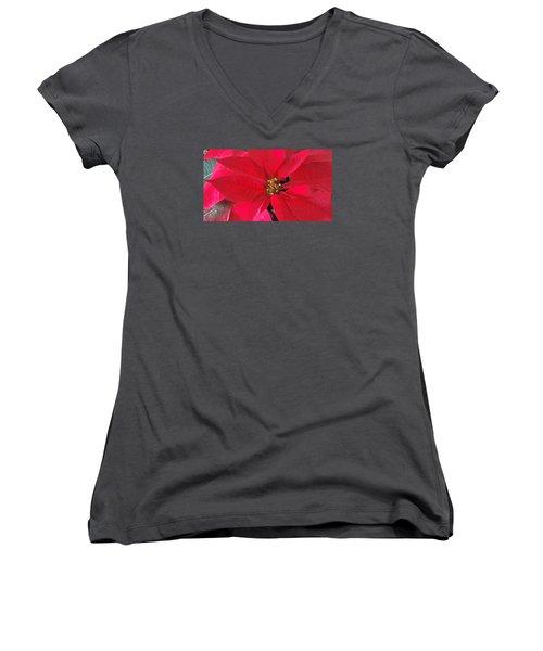 Red Poinsettia Women's V-Neck
