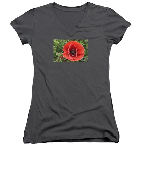 Women's V-Neck T-Shirt (Junior Cut) featuring the photograph Red Poppy Flower 2 by Jean Bernard Roussilhe