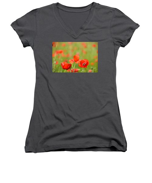Red Poppy In A Field Of Poppies Women's V-Neck T-Shirt (Junior Cut) by IPics Photography