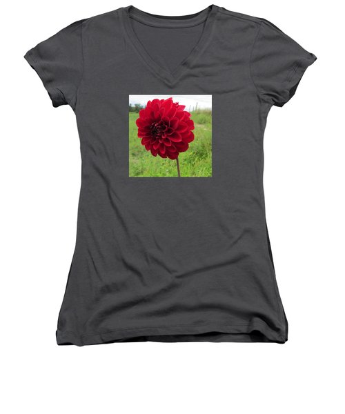 Red, Red, Red Women's V-Neck T-Shirt (Junior Cut) by Jeanette Oberholtzer