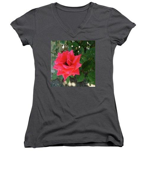 Pink Rose  Women's V-Neck T-Shirt (Junior Cut) by Don Pedro De Gracia