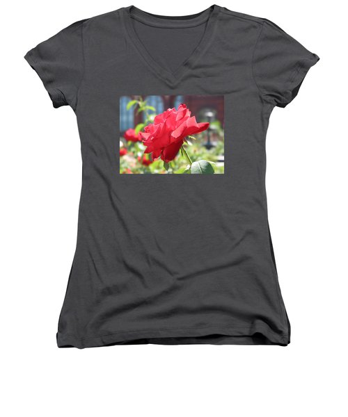 Red Rose Women's V-Neck T-Shirt (Junior Cut) by Brian McDunn