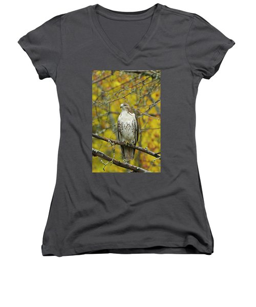 Red Tail Hawk 9888 Women's V-Neck T-Shirt (Junior Cut) by Michael Peychich