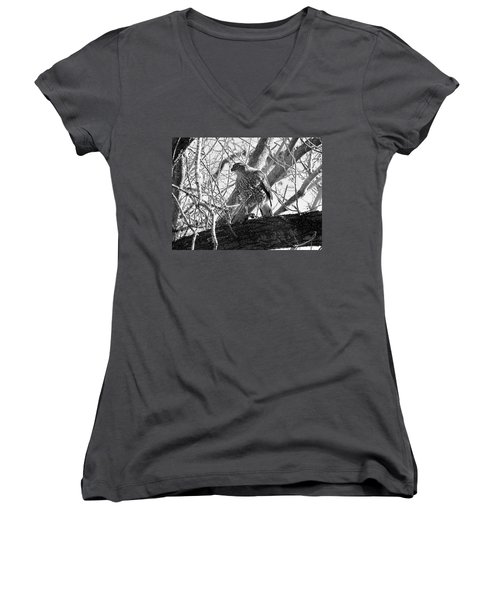 Red Tail Hawk In Black And White Women's V-Neck