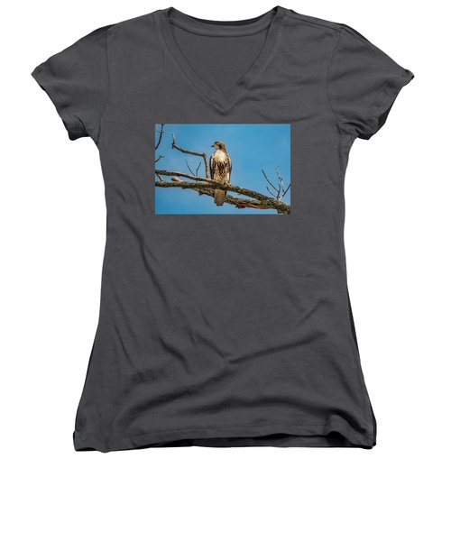 Red Tail Hawk Perched Women's V-Neck