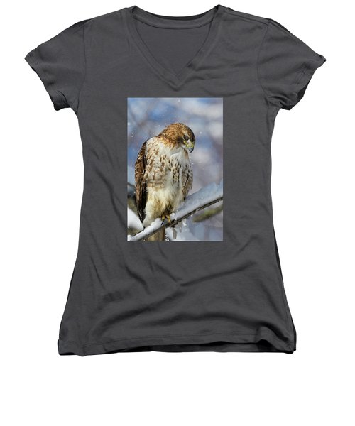 Women's V-Neck featuring the photograph Red Tailed Hawk, Glamour Pose by Michael Hubley