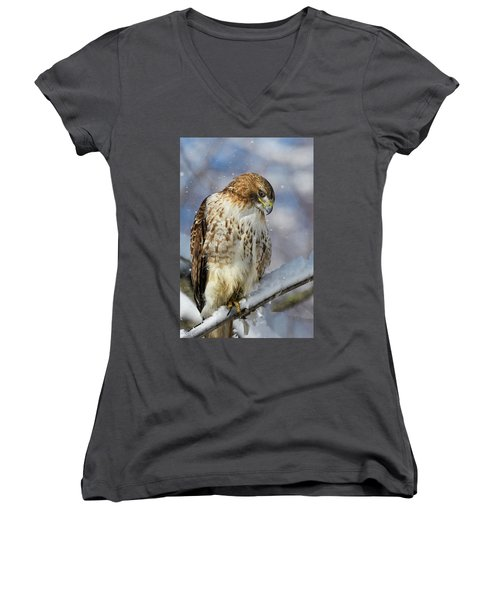 Red Tailed Hawk, Glamour Pose Women's V-Neck