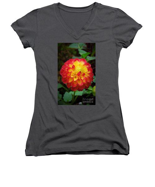 Red Tipped Petals Women's V-Neck (Athletic Fit)