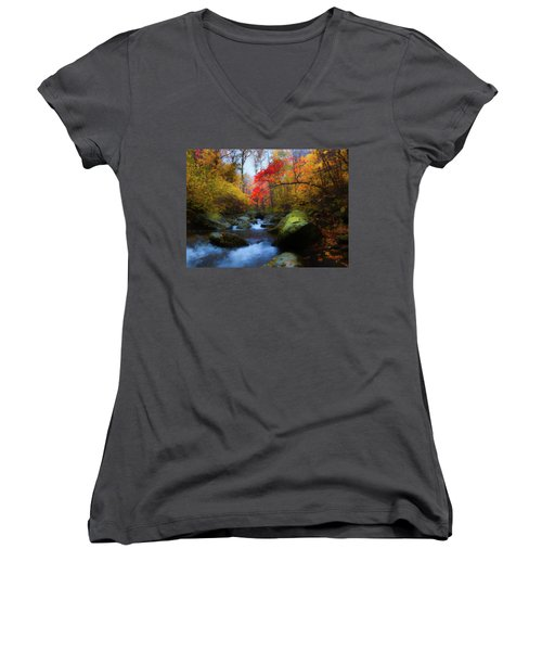 Red Tree In White Oak Canyon Women's V-Neck (Athletic Fit)