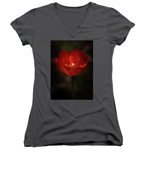 Red Tulip Women's V-Neck T-Shirt (Junior Cut) by Ernie Echols