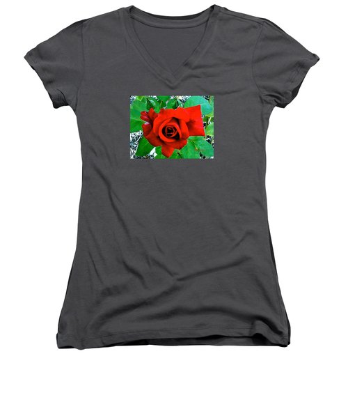 Women's V-Neck T-Shirt (Junior Cut) featuring the photograph Red Velvet Rose by Sadie Reneau
