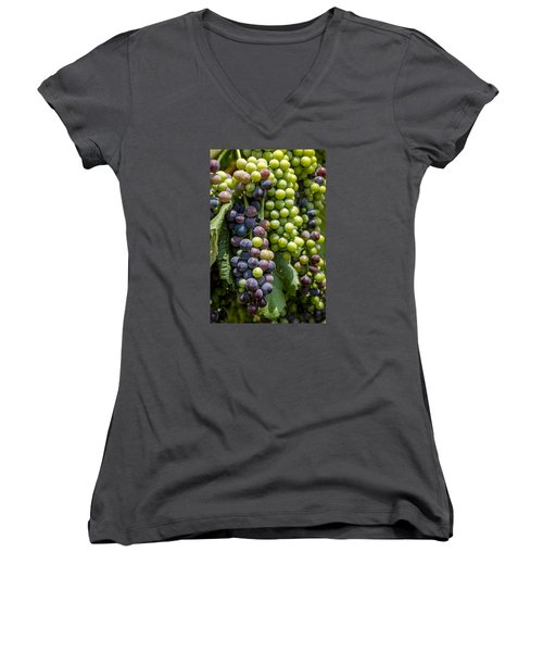 Red Wine Grapes In The Vineyard Women's V-Neck